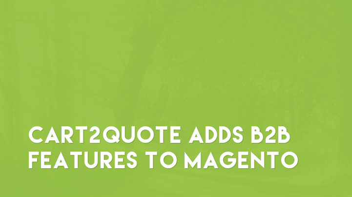 Magento B2B Features